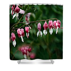 Shower Curtain featuring the photograph Spring 2016 22 by Cendrine Marrouat