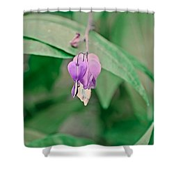 Shower Curtain featuring the photograph Spring 2016 23 by Cendrine Marrouat