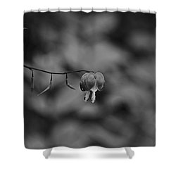 Shower Curtain featuring the photograph Spring 2016 24 by Cendrine Marrouat