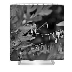 Shower Curtain featuring the photograph Spring 2016 25 by Cendrine Marrouat