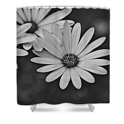 Shower Curtain featuring the photograph Spring 2016 27 by Cendrine Marrouat
