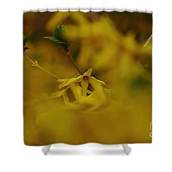 Shower Curtain featuring the photograph Spring 2016 7 by Cendrine Marrouat