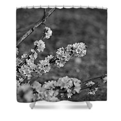 Shower Curtain featuring the photograph Spring 2016 9 by Cendrine Marrouat