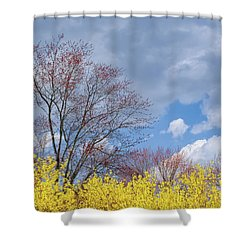 Shower Curtain featuring the photograph Spring 2017 by Bill Wakeley