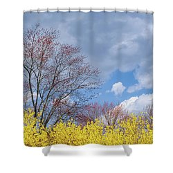 Shower Curtain featuring the photograph Spring 2017 Square by Bill Wakeley