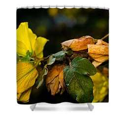 Spring Almost Gone Shower Curtain