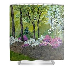 Spring Along Tega Cay Drive Shower Curtain