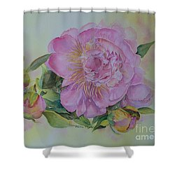 Spring Around The Corner Shower Curtain