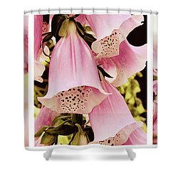 Shower Curtain featuring the photograph Spring Assemblage Triptych by Jessica Jenney