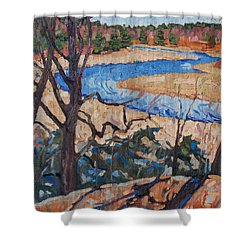 Spring At The Jones Shower Curtain by Phil Chadwick