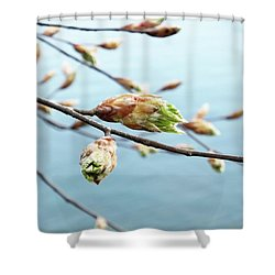 Spring At The Lake Shower Curtain