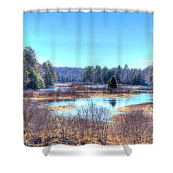 Shower Curtain featuring the photograph Spring Scene At The Tobie Trail Bridge by David Patterson