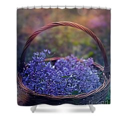Spring Basket Shower Curtain by Agnieszka Mlicka