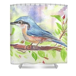 Spring Bird  Shower Curtain by Isabel Proffit