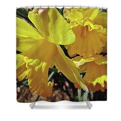 Spring Bloom # 2 Shower Curtain