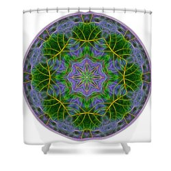 Spring Bloom Colors Mandala Shower Curtain