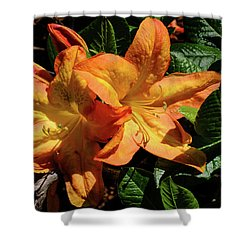 Spring Bloom Shower Curtain