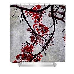 Spring Bloosom In Maldives. Flamboyant Tree II. Japanese Style Shower Curtain