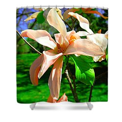 Shower Curtain featuring the photograph Spring Blossom Open Wide by Jeff Swan