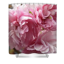 Spring Blossoms #1 Shower Curtain