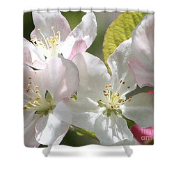 Shower Curtain featuring the photograph Spring Blossoms by Anita Oakley