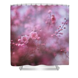 Spring Blossoms In Their Beauty Shower Curtain