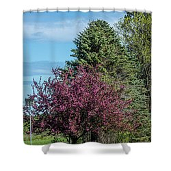 Shower Curtain featuring the photograph Spring Blossoms by Paul Freidlund