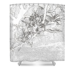 Spring Blossums Shower Curtain