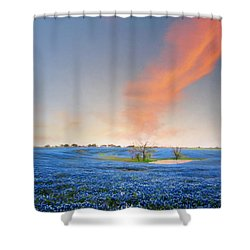 Spring Bluebonnets In Texas Shower Curtain by David and Carol Kelly