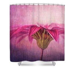 Shower Curtain featuring the photograph Spring Blush by Amy Weiss