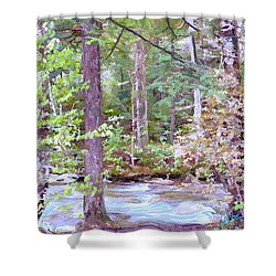 Spring Brook Shower Curtain by John Selmer Sr