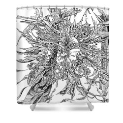 Spring Burst Shower Curtain by Charles Cater