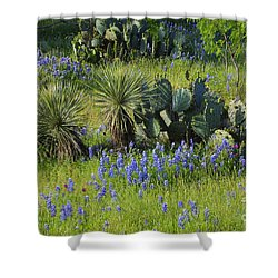Spring Cactus, Yucca And Blue Bonnets Shower Curtain