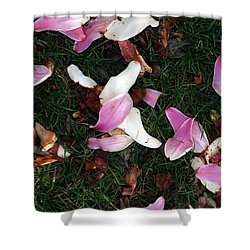 Spring Carpet Shower Curtain