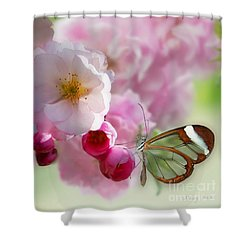 Spring Cherry Blossom Shower Curtain
