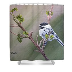 Spring Chickadee Shower Curtain by Wendy Shoults