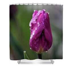 Shower Curtain featuring the photograph Spring Coat by Silke Brubaker