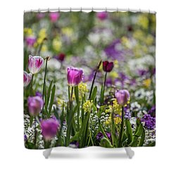 Spring Colors Shower Curtain by Eva Lechner