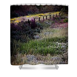 Spring Colors Shower Curtain by Kelly Wade