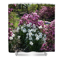 Spring Colours Shower Curtain by Phil Banks