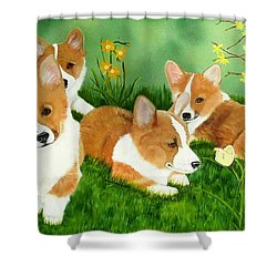 Spring Corgis Shower Curtain by Debbie LaFrance