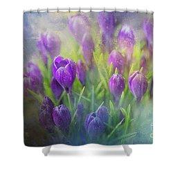 Spring Delight Shower Curtain by Eva Lechner