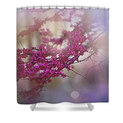Shower Curtain featuring the photograph Spring Dream I by Toni Hopper