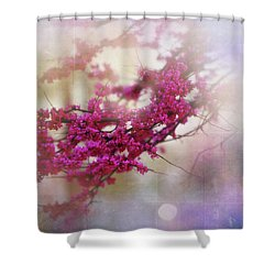 Shower Curtain featuring the photograph Spring Dreams II by Toni Hopper
