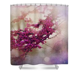 Shower Curtain featuring the photograph Spring Dreams IIi by Toni Hopper