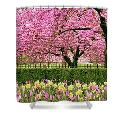 Shower Curtain featuring the photograph Spring Extravaganza by Jessica Jenney