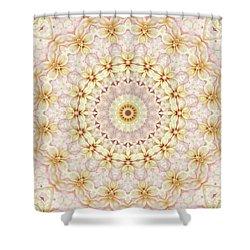 Spring Fantasy Floral Mandala Shower Curtain by Janusian Gallery