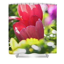 Spring Feeling Shower Curtain