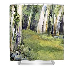 Shower Curtain featuring the painting Spring Field by Laurie Rohner