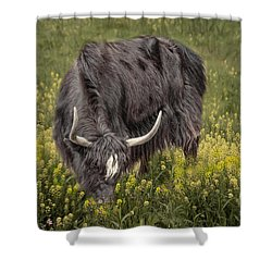 Shower Curtain featuring the photograph Spring Fields by Robin-Lee Vieira